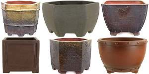 Bonsai pots for bonsai designed in a semi-cascade style