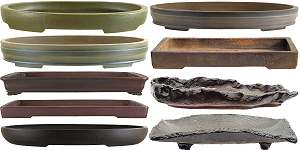 Bonsai pots for forest style