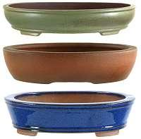 Bonsai pots oval