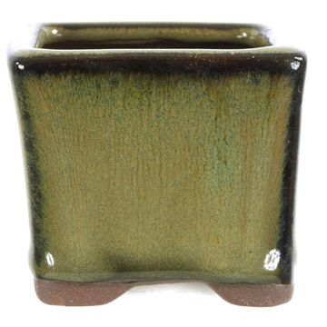 Bonsai pot beige square glaced 5.4x5.4x4.5cm