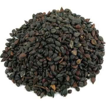 Seed of Chaenomeles lagenaria, High quince, 15 pieces
